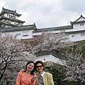 20040401~0407 日本京阪神賞櫻行