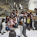 再訪-木柵 動物園