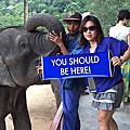 WV環遊世界旅遊(泰國)