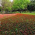 花團錦簇的大溪埔頂公園