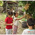 2009年小小農夫體驗營