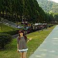2014九族櫻花祭
