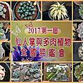 20171105我在田尾賞全國仙人掌與多肉植物評鑑會