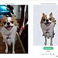 [分享]2019免費線上圖片編輯網站~線上去背、線上消除路人