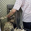 香港。何洪記、堂泰海鮮餐館、電車全景遊、公利真料竹蔗水