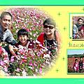 2013蘆竹花海節