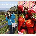 公主草莓園