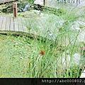 江夏景觀設計/0903092008/景觀工程/園藝造景/庭園造景/景觀石材/景觀木結構