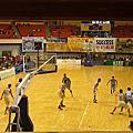 觀護盃籃球賽