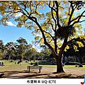 Brisbane - UQ ICTE (昆士蘭大學附設語校)