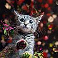 「流浪貓畫家」用肉蹼創作 募款幫助流浪動物
