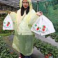 草莓好大好紅....好酸....冏+台南吃吃吃~獎品中中中!!