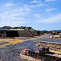 2016瀨戶內國際藝術祭-犬島