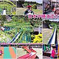 沖繩浦添大公園