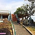 沖繩東村杜鵑花季