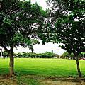 沖繩西崎親水公園