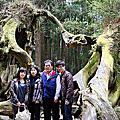 2011  0402  阿里山賞櫻