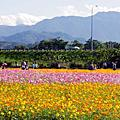 2014 春.櫻