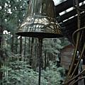 森林小火車@台灣太平山
