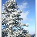 2008合歡山群峰