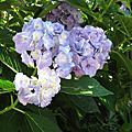 2011夏:關西-0708 私と奈良