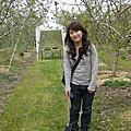 110505 兒童節看蘋果花