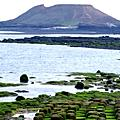 澎湖2008春末