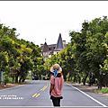 2018-台灣欒樹(瑞穗溫泉路、富興社區、北岡大橋)