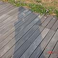 左營-孔廟 2007.5.18