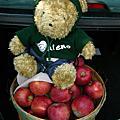 200809採蘋果