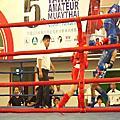 2014年全國業餘泰拳錦標賽