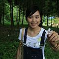 桐花,螢火蟲,東勢林場