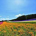 2013 北海道夏之旅 Day5-0723