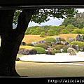 日本庭園第一@足立美術館