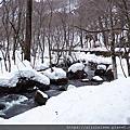 冬-奧入瀨溪流、十和田湖