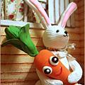 【兔兔の回忆】