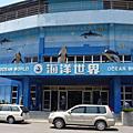 【遊記】海龍珠、海洋世界、亞尼克、碧潭97-08-02