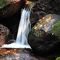 青山瀑布一日遊20131207