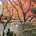 2010/11/24-京都秋楓Day3