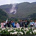 2015 April 26 陽明山 荷廚茗園焢窯與頂湖海芋
