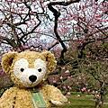 2012春‧日本