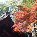 2009秋‧日本