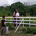 花海--新人拍照的最佳去處
