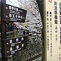 關西五星四都(2)-琵琶湖、嵐山、竹林步道、西陣織、銀閣寺