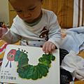 Zora 成長日記