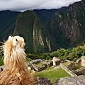 [Peru祕魯]20130524 印加失落之城 - 馬丘比丘
