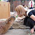 神戶動物園王國