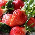 2011.01.10草莓寫真