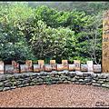 宜蘭礁溪~林美石磐步道