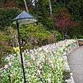 Vancouver Island & Salt Spring Island 溫哥華島與鹽泉島